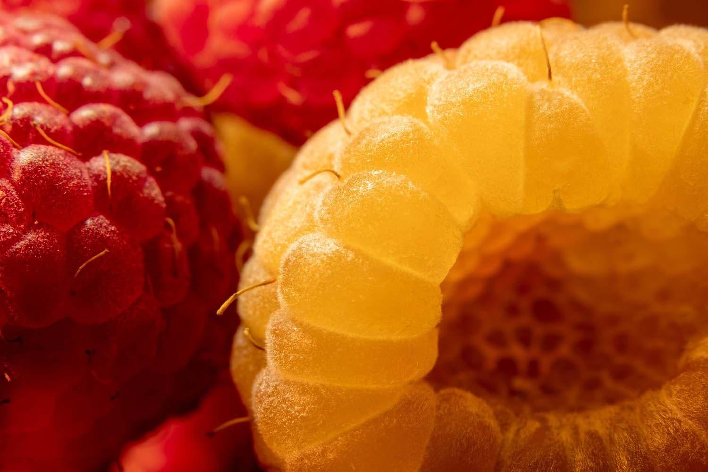 colourful raspberries Image by Yevhen Buzuk from Pixabay